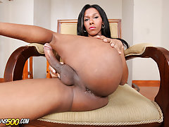 Gorgeous, sexy, tanned and beautiful are just a few words to describe Tatiana Guzman.Tatiana Guzman is one of those shecock packing girls that needs no introduction.One look at her and you know there's good ol' shecock stroking and dildo stuffing action g